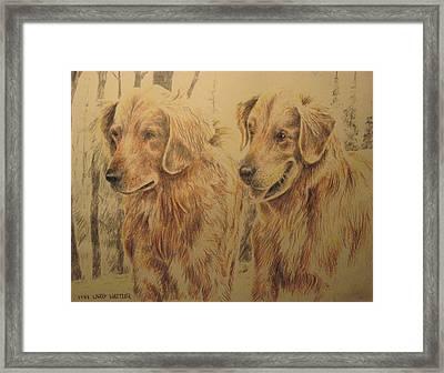 Joe's Dogs Framed Print