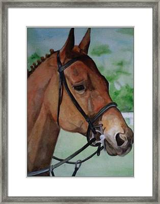 Joe's Horse Framed Print by Tabitha Marshall