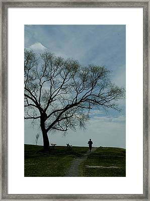 Jogger Runs Along A Path Past A Weeping Framed Print by Todd Gipstein