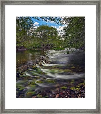 John Day River South Fork Framed Print by Leland D Howard