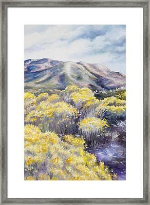 John Day Valley II  Framed Print