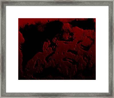 John F Kennedy 1d Framed Print by Brian Reaves