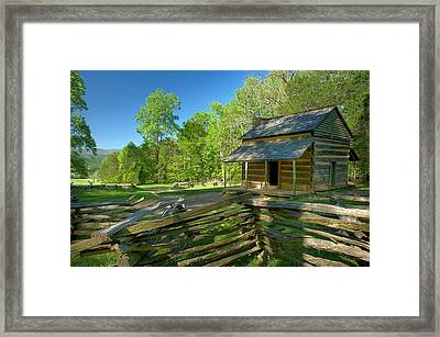 John Oliver Framed Print by Darrell Young