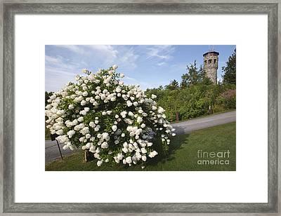 John Wingate Weeks Estate - Lancaster New Hampshire Framed Print by Erin Paul Donovan
