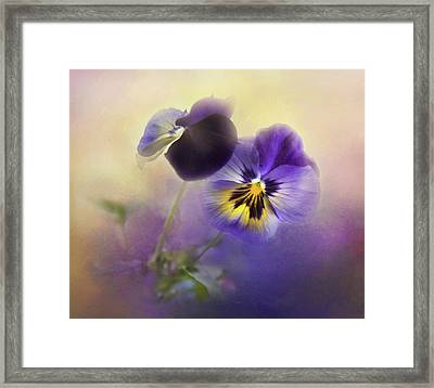 Framed Print featuring the photograph Johnny Jump Up by Theresa Tahara