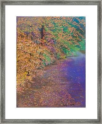 John's Pond In The Fall Framed Print