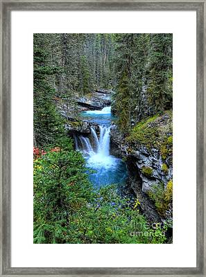 Johnston Canyon Falls Hike Lower Falls Framed Print by Wayne Moran
