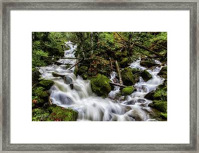 Joining Forces Framed Print by Charlie Duncan