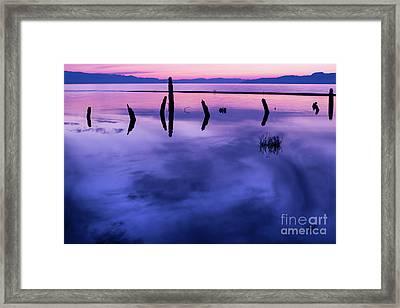 Jojkjk Framed Print by Gary Whitton