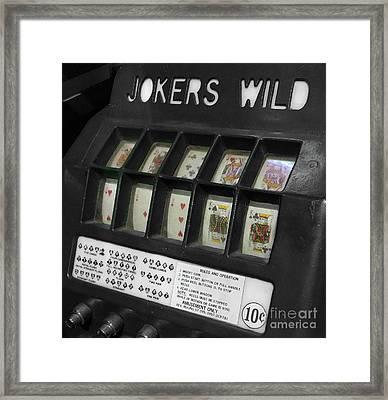 Joker's Wild  Framed Print by Steven Digman
