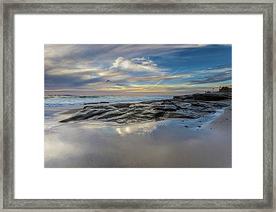 Jonathan Livingston Framed Print by Peter Tellone
