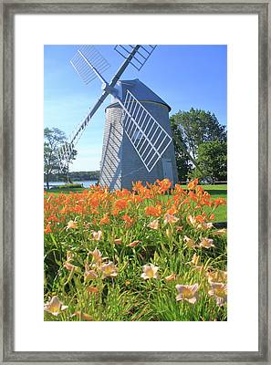 Jonathan Young Windmill Summer Lilies Cape Cod Framed Print by John Burk