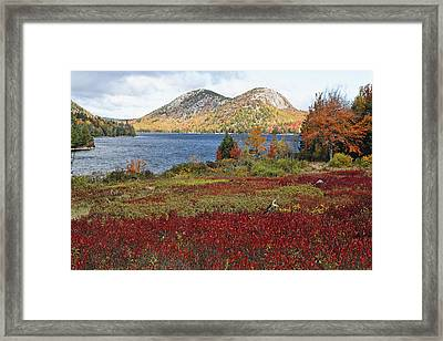 Jordan Pond And The Bubbles Framed Print by George Oze