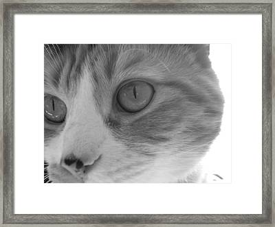 Jordi Girl Framed Print