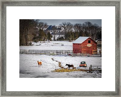 Joseph Oregon Framed Print by Cat Connor
