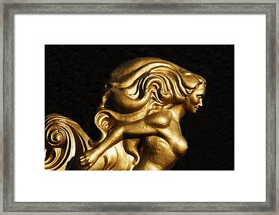 Josepha Queen Of Gasparilla Framed Print by David Lee Thompson