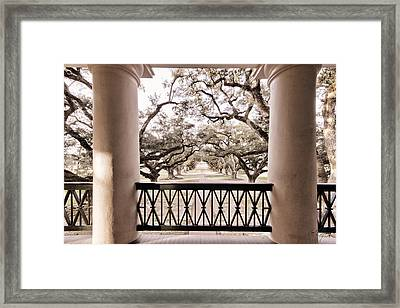 Josephine's View Of Oak Alley Plantation Framed Print by Timothy V Ganier