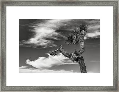 Joshua Framed Print by Joseph Smith