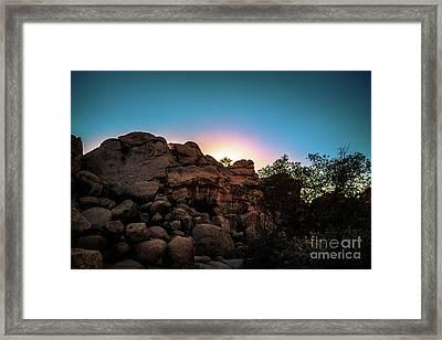 Joshua Tree Dawn Of A New Day  Framed Print by Timothy Kleszczewski