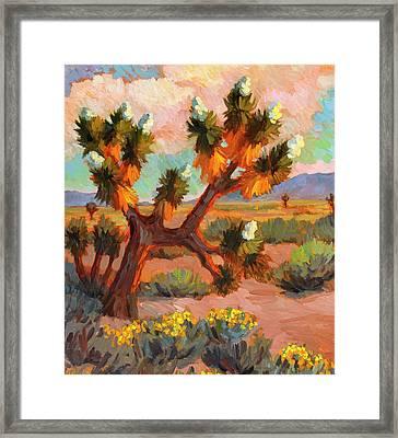 Joshua Tree Framed Print by Diane McClary
