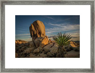 Joshua Tree Rock Formation Framed Print