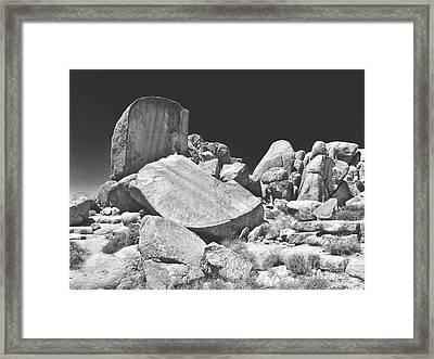 Joshua Tree Framed Print