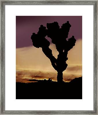 Joshua Tree Silo At Sunset Framed Print by Curtis J Neeley Jr