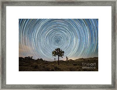 Joshua Tree Star Trails  Framed Print