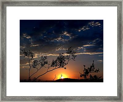 Joshua Tree Sunset Framed Print by Chris Tarpening