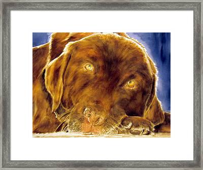 Josie Framed Print by Susan Gauthier