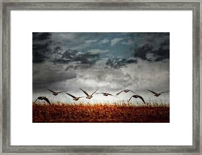 Journey 5 Framed Print