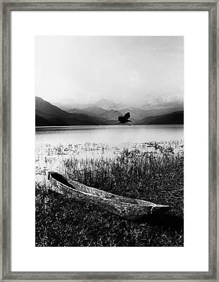 Journey Framed Print by Jimmy Bruch