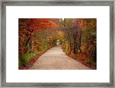 Journey Framed Print by Linda Drown
