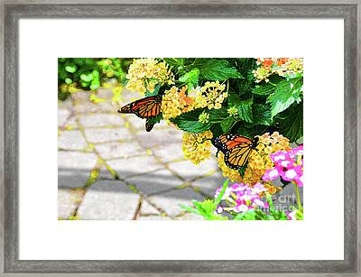 Journey With An Open Heart Framed Print by Robyn King