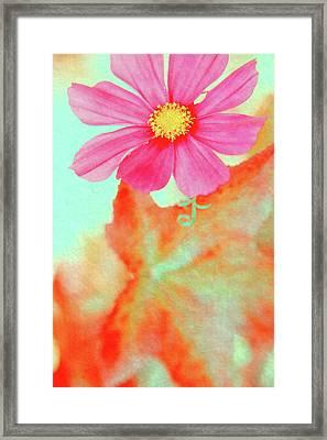 Joy Framed Print by Bonnie Bruno