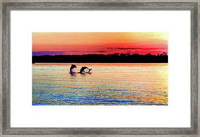 Joy Of The Dance Framed Print