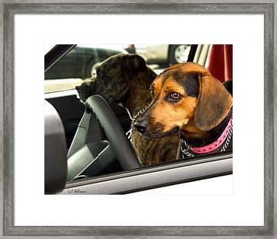 Joy Ride Framed Print by Christopher Holmes