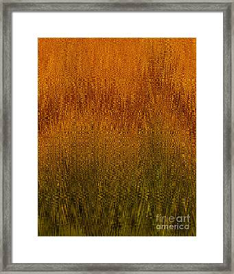 Joyful Harvest Framed Print by Diane E Berry