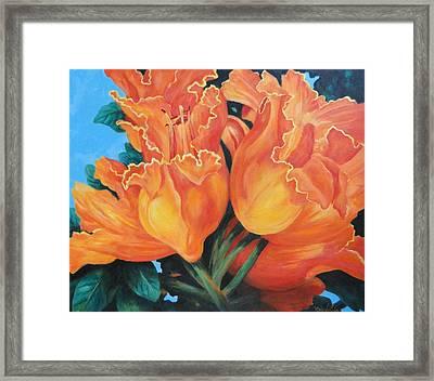 Joyous Celebration Framed Print by Carol Reynolds