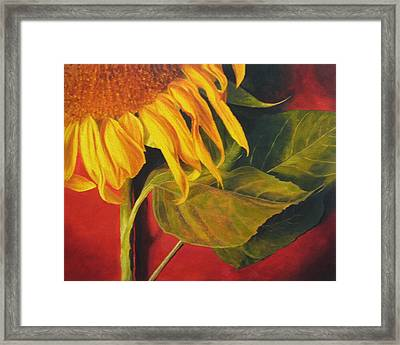 Framed Print featuring the painting Joy's Sunflower by Marina Petro