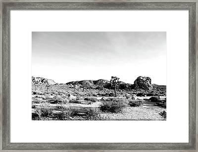 Jt 45 Framed Print