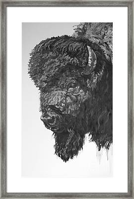 Judge Framed Print by Patricia A Griffin