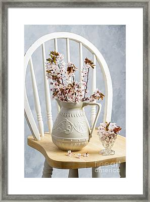Jug Of Spring Blossom Framed Print by Amanda Elwell