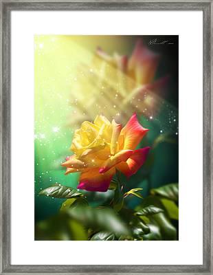 Juicy Rose Framed Print by Svetlana Sewell