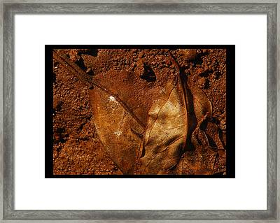 jul 18, 2016, Leaves OF Beauty Framed Print by Nayan Mipun