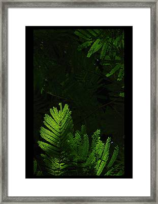 jul 18, 2016, Leaves Of Heaven, Framed Print by Nayan Mipun