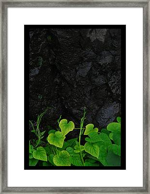 jul 18, 2016, Mist, Framed Print by Nayan Mipun