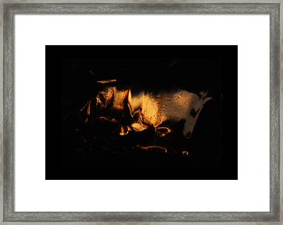 jul 18, 2016, Sun Horse, Framed Print by Nayan Mipun