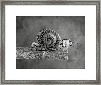 Julia Snail Framed Print