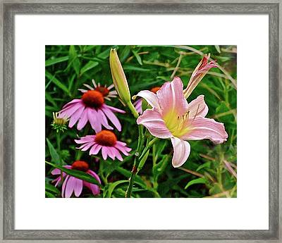 July Lily #10 Framed Print